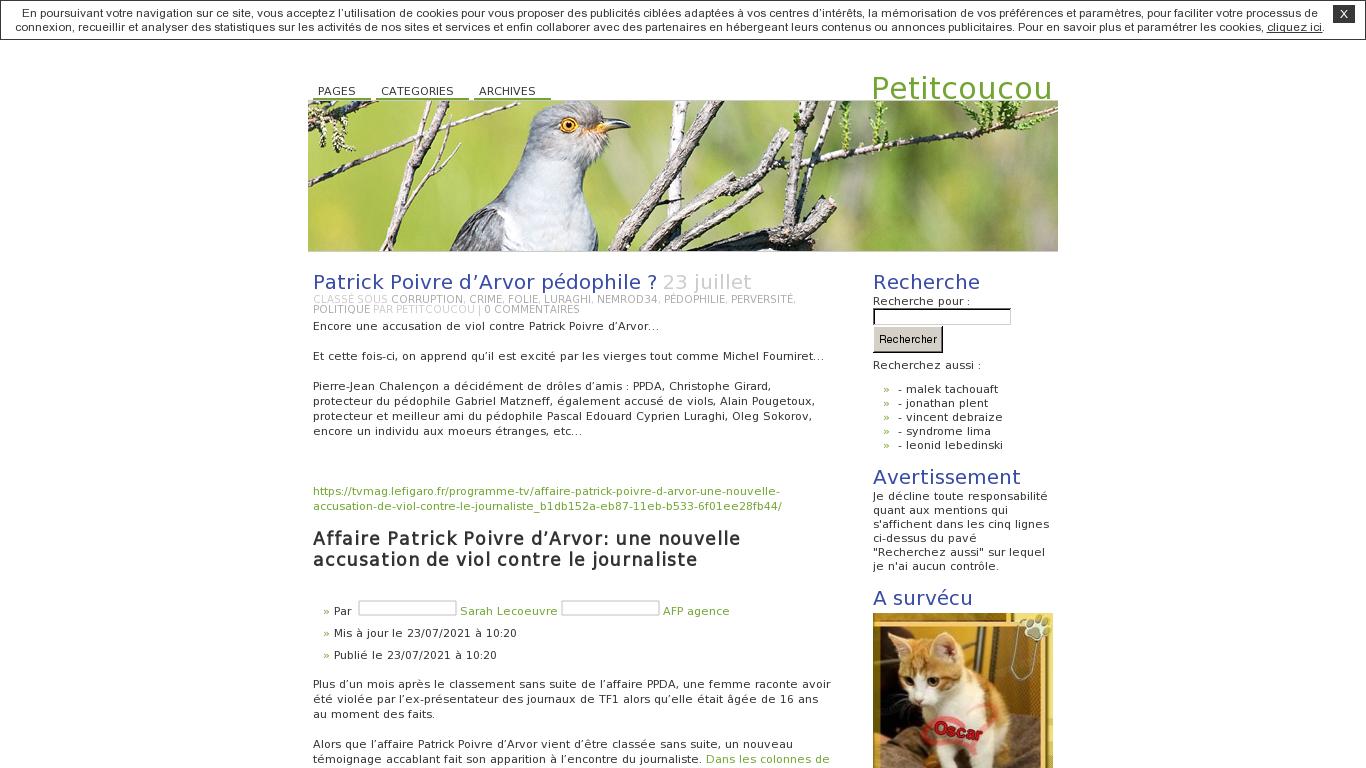 Audit de mes blogs Petitcoucou, Justinpetitcoucou et Satanistique par Semalt dans Calomnie